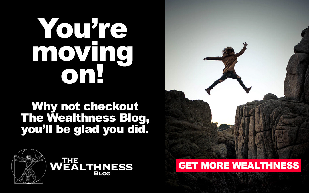 The Wealthness Blog